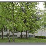 EURO EDUCATION FEDERATION are o nouă filială în provincia Vojvodina, Municipiul Ruma – Serbia!