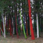 """Federația """"EURO EDUCATION"""" solicită societății civile continuarea proiectului de vopsire a pădurilor din România!"""