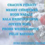 Euro Education Federation vă urează CRĂCIUN FERICIT!