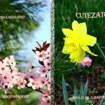 Echipa noastră a editat numărul 5 al revistei CUTEZĂTOR